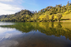 Landscape with mountains trees and a lake at Ranu Kumbolo, Semeru Volcano Mountain, East Java, Indonesia. Semeru Mountain also known as Mahameru Mountain in Stock Photography