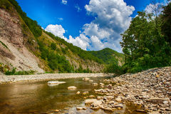 Landscape with mountains trees and a river in front Royalty Free Stock Images