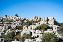 A landscape with mountains. A landscape with wild goats, mountains of El Torcal in Andalusia, Spain Royalty Free Stock Images
