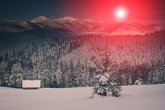 Landscape of mountains winter. View of snow-covered conifer trees at sunrise. Retro filter. royalty free stock image