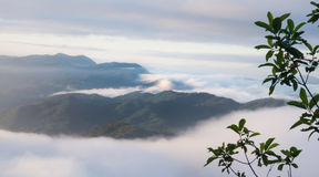 Landscape of moving mist in the mountain and hill Royalty Free Stock Images