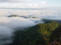Landscape of moving mist in the mountain and hill Royalty Free Stock Photo
