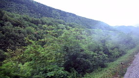The landscape from the moving train. Shot of the landscape from the moving train stock footage