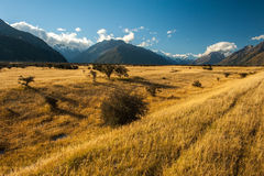Landscape of mt.cook national park, New Zealand Royalty Free Stock Photos