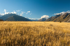 Landscape of mt.cook national park, New Zealand Stock Photo