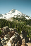 Landscape of Mt. Hood Stock Images