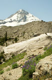 Landscape of Mt. Hood Royalty Free Stock Photos