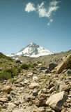 Landscape of Mt. Hood Royalty Free Stock Image