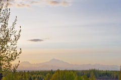Landscape of Mt McKinley Royalty Free Stock Photos