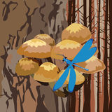Landscape with mushrooms on a tree Stock Photography