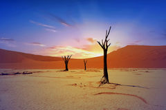 Landscape of Namib Naukluft National park at sunrise in Namibia. Namib Naukluft Desert panorama view with mountains and desert sand with a dramatic sunrise royalty free stock photo