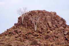 Landscape in Namibia Stock Image