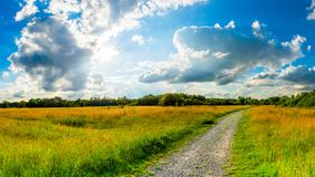 Summer landscape near Cologne in Germany. A landscape with a narrow path passing through green fields  somewhere near Cologne, Germany on a sunny summer day Stock Photo