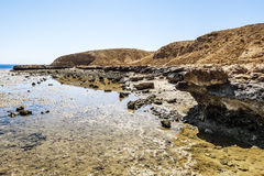 Landscape of the National Park of Ras Mohammed in  Egypt,Red sea Stock Image