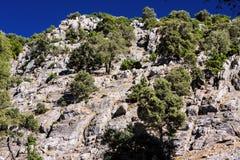 Landscape in the national park Tazekka, Morocco Royalty Free Stock Photo