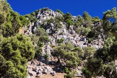 Landscape in the national park Tazekka, Morocco Stock Images