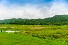 Landscape Natrue and a water mist at Kaeng Krachan Dam. stock image