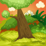 Landscape natural forest Royalty Free Stock Image