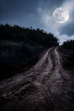 Landscape in nature of beautiful full moon with a muddy road through a forest. Landscape in nature of beautiful full moon with tire tracks on a muddy road royalty free stock photo
