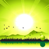 Landscape, nature, grass and b Stock Photo