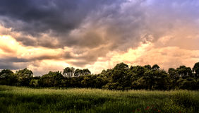 Landscape nature horizontal. After storm Stock Images