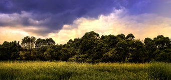 Landscape nature. Horizontal, after storm Royalty Free Stock Image