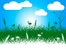 Landscape Nature Indicates Green Grass And Clothes-Line Royalty Free Stock Photo
