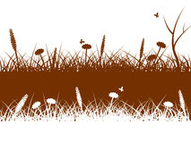 Landscape Nature Indicates Green Grass And Environment Royalty Free Stock Photo