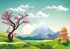 Landscape nature Japan this morning. Pagoda and cherry blossom. Mountains and volcanoes on the coast. Realistic vector illustration Stock Photography