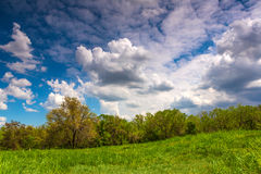 Landscape nature meadow field  summer Stock Photo