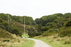 Landscape and nature in Rebild Hills in Denmark Royalty Free Stock Photo