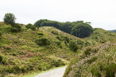 Landscape and nature in Rebild Hills in Denmark Royalty Free Stock Images