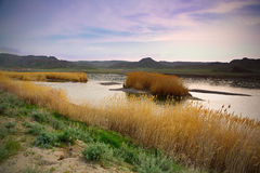 Landscape nature river Central Asia  Stock Photo