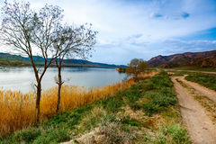 Landscape nature river tree sky Central  Asia Stock Photo