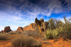 Landscape Nature - Sedona, Arizona Stock Image
