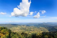 Landscape nature on top of a mountain at Phu Rua , Loei , Thailand Stock Image