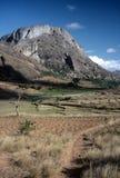 Landscape near Ambalavao,Madagascar. Fields and rice Paddies  near Ambalavao  ,Madagascar Stock Images