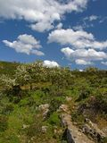 Landscape near Armungia, Sardinia Royalty Free Stock Image