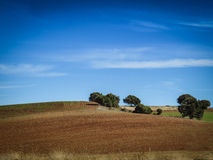 Landscape near Bilbao in the North of Spain in Europe Royalty Free Stock Image