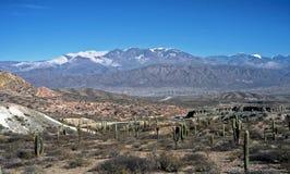 Landscape near Cachi ,Salta,Argentina. Mountain and cactus near Cachi village,Salta,Argentina Stock Photos