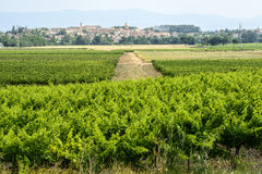 Landscape near Carcassonne Stock Images