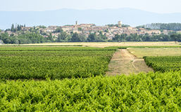 Landscape near Carcassonne Royalty Free Stock Photos