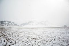 Landscape near Castle Hill covered in snow, South Island, New Zealand.  stock photo