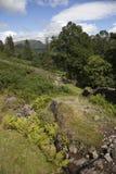 Landscape near Grasmere Stock Photo
