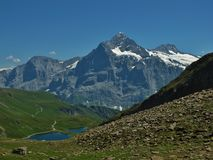 Landscape Near Grindelwald Royalty Free Stock Photography