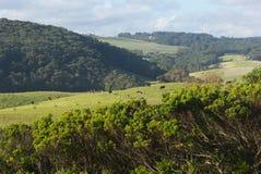 Landscape near Johanna Beach. Australia Royalty Free Stock Photo