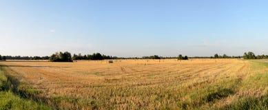 Landscape near Laekvere Parish Stock Images
