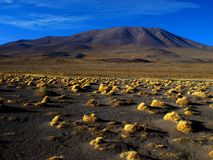 Landscape near Laguna Colorada. (Altiplano, Bolivia Royalty Free Stock Image