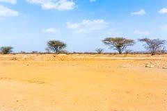 Landscape near Laisamis, Kenya Royalty Free Stock Photos