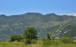 Landscape Near Ljubinje Stock Image